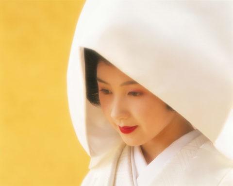 黄バックで綿帽子の花嫁