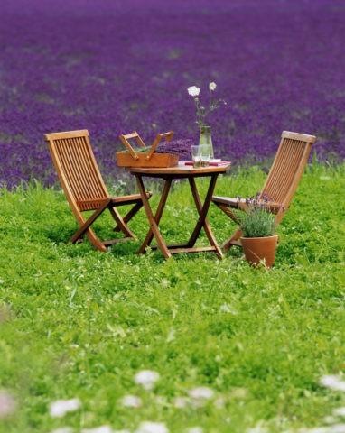ラベンダー畑とイスとテーブル