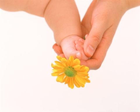 花を持つ母と子の手