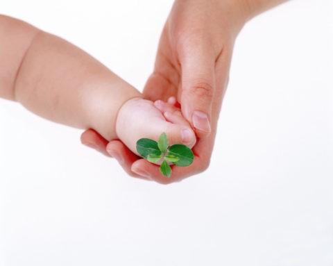 双葉を持つ母と子の手