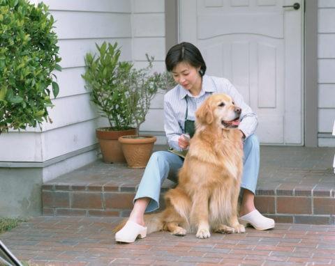 犬の手入れをする女性