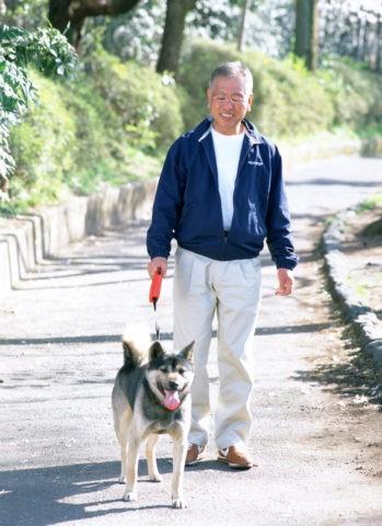 散歩をする男性 熟年