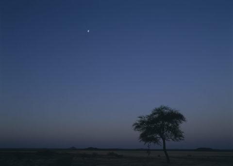ネフド砂漠の朝と月