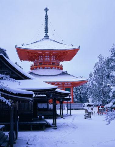 高野山 雪の大塔 W