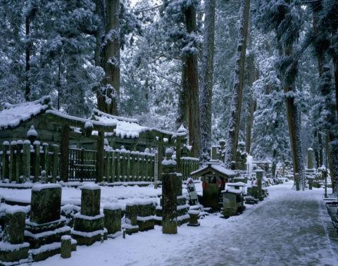 高野山 雪の奥の院参道 W