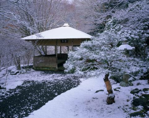 雪の白龍園 鴬亭