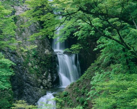 新緑の十二滝