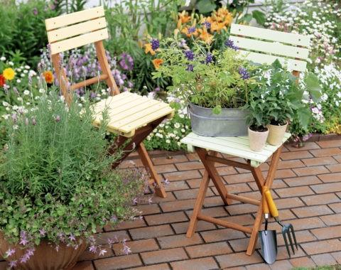 椅子と鉢植