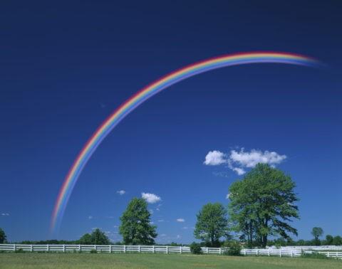 白い柵と樹木と虹(合成)