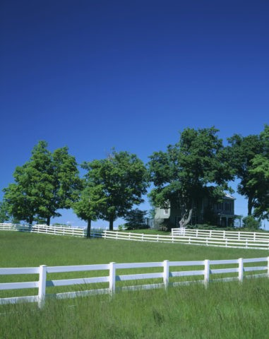 白い柵と樹木と家