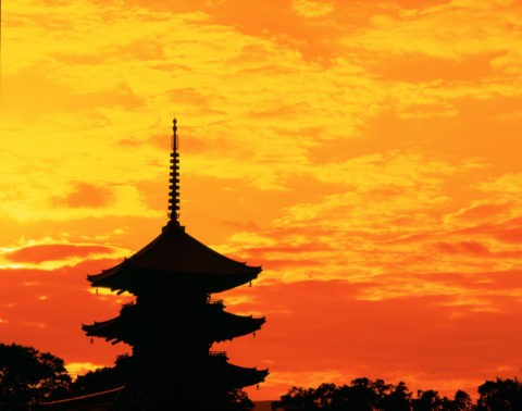 朝の東寺世界遺産 (乳剤面表)