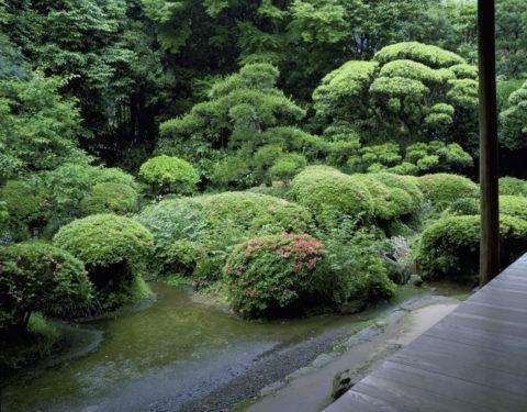 柴屋寺庭園