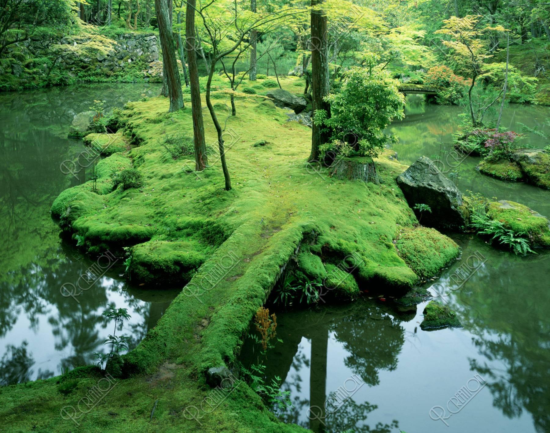 西芳寺の庭 (苔寺)