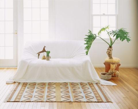 ソファとマットと観葉植物