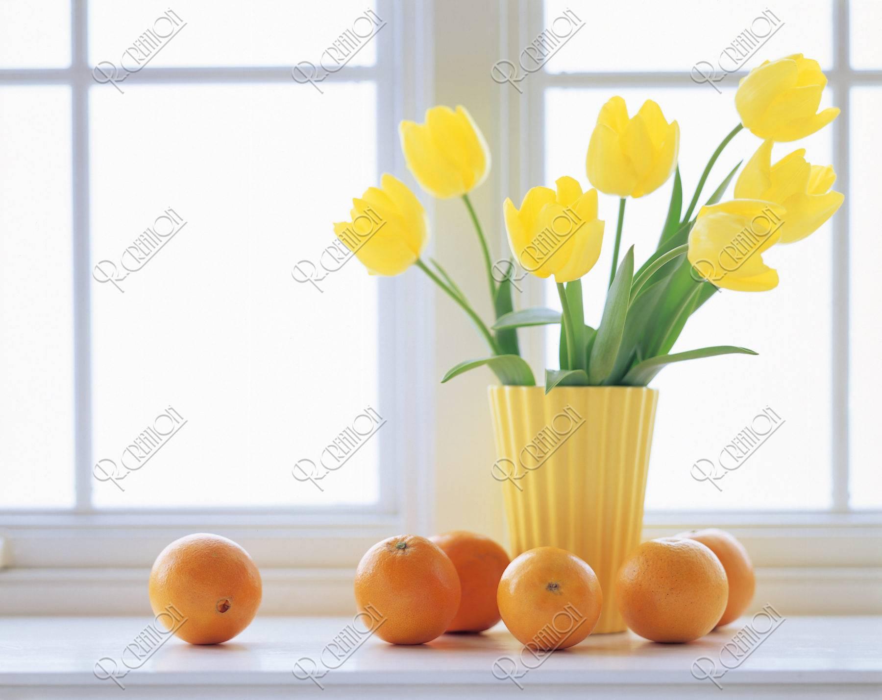 窓辺のチューリップとオレンジ
