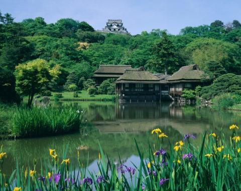 玄宮園と彦根城