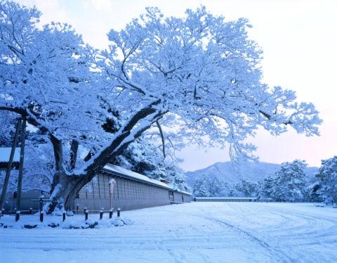 大文字山と京都御所