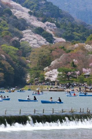 嵐山 春の行楽