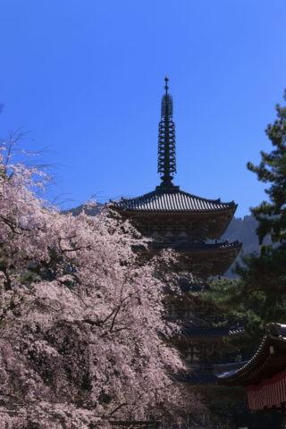 醍醐寺 世界遺産