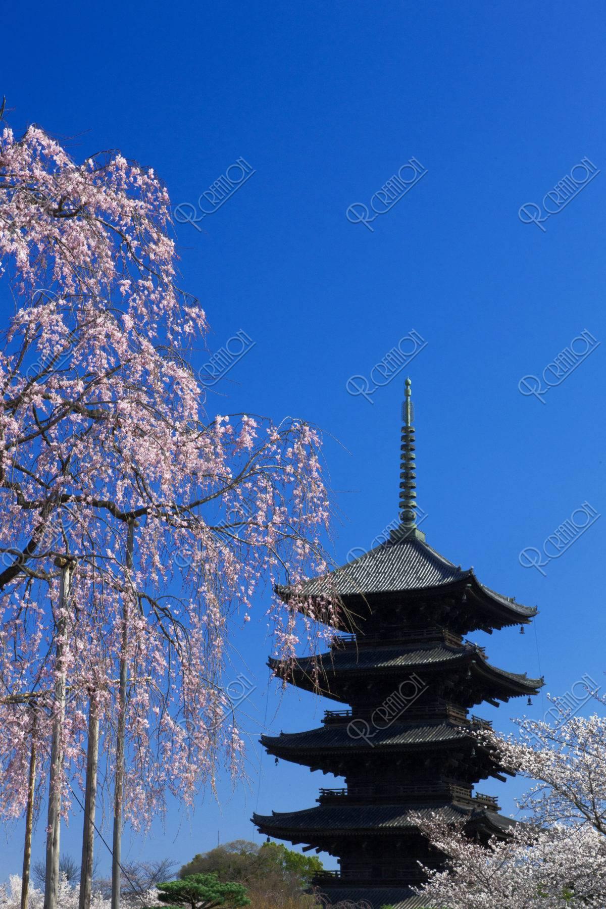 東寺 世界遺産