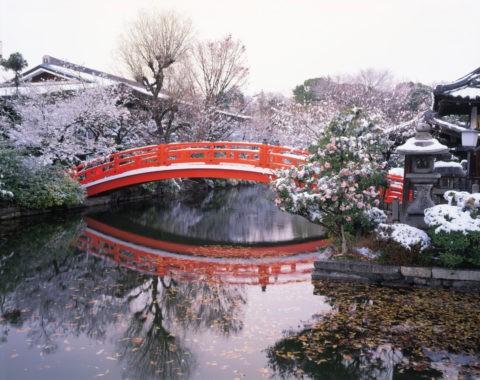雪の神泉苑