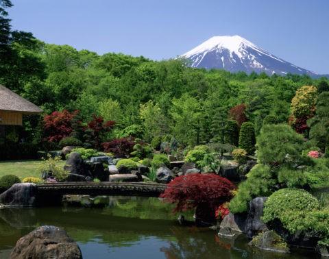庭園と富士山