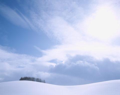 雪原の丘と樹々
