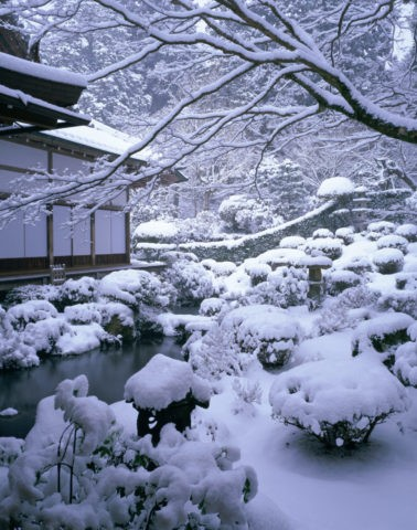 三千院 聚碧園 雪景