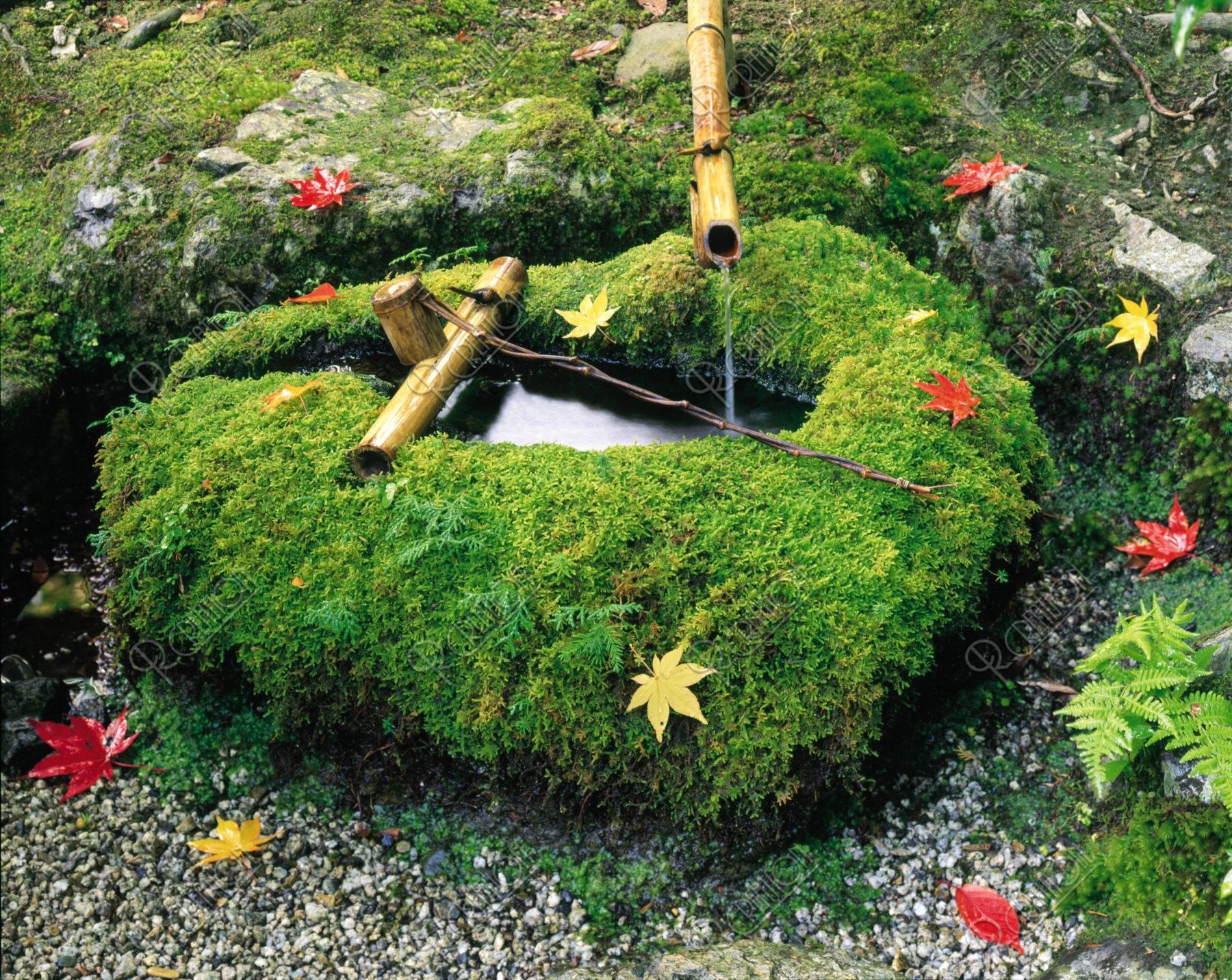 北山 紅葉と手水鉢 京都
