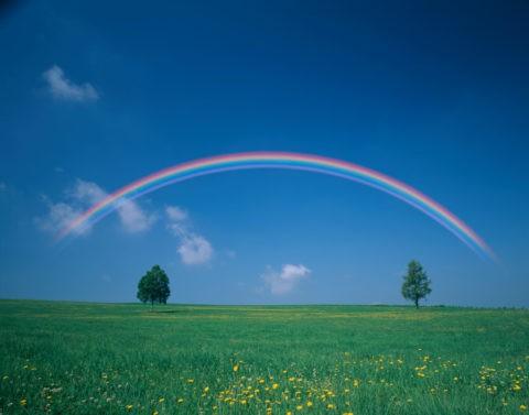 虹と白樺と牧草地(合成)