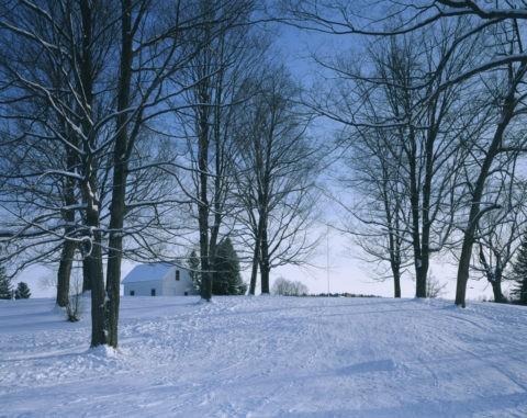 雪の丘と白い家