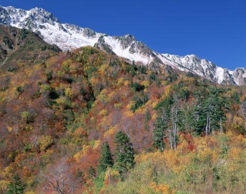 紅葉と立山連峰