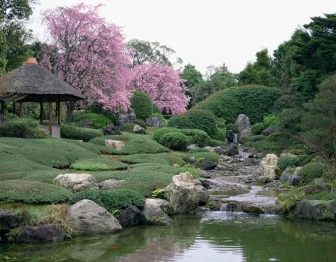 退蔵院の庭園 京都