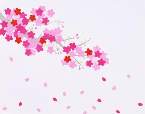 和風切り絵 桜