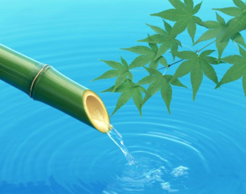 青竹から流れ落ちる水ともみじ