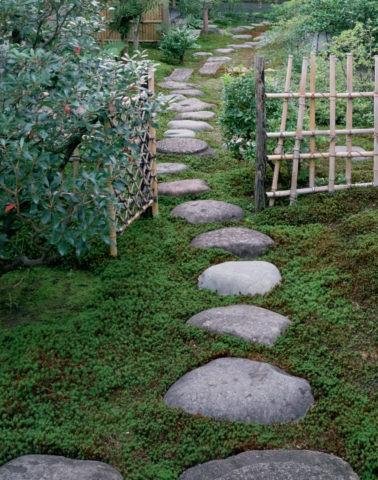 苔むす庭と飛び石