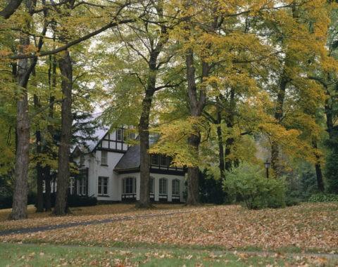 紅葉の中の家