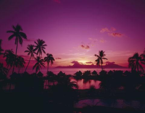 夕照のコテージとヤシ タヒチ