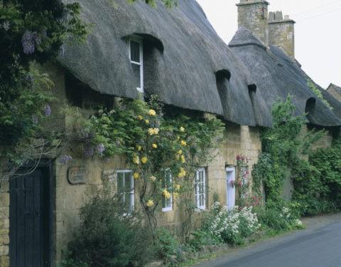 かやぶきの家とバラ