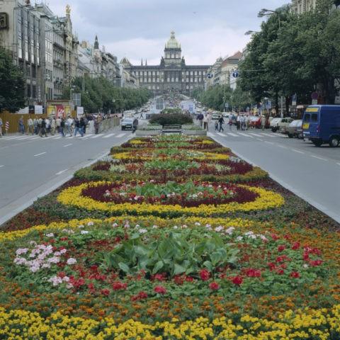 バーツラフ広場と花壇