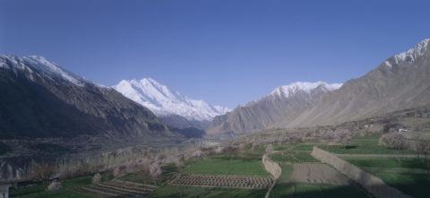 フンザ村の段々畑とラカポシ山 パキスタン