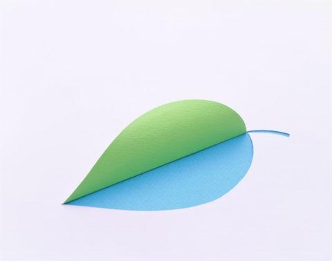 緑と青色の1枚の葉の形 紙