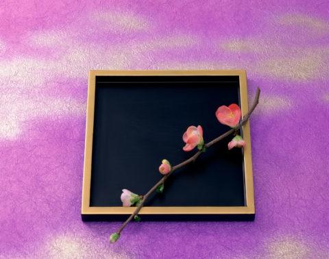 ぼけの花と金縁盆