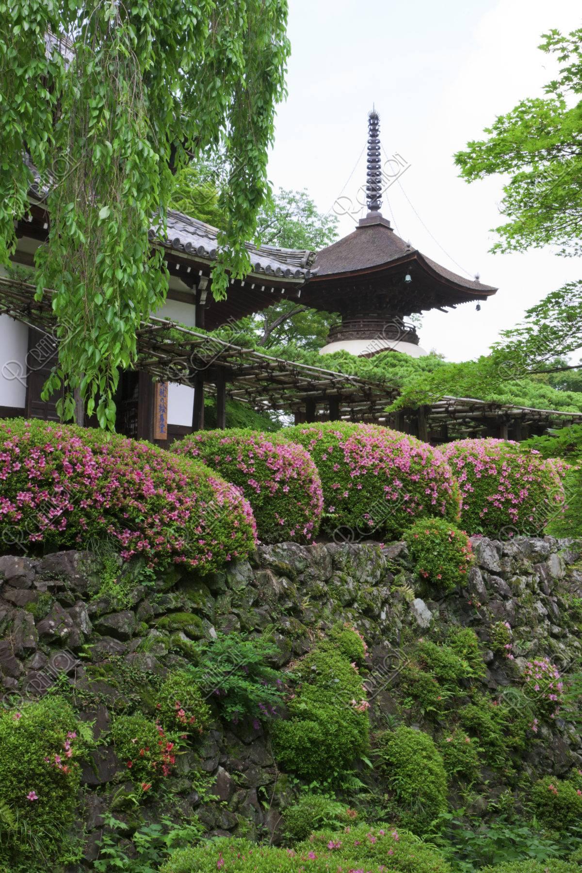 サツキ咲く善峰寺