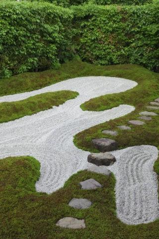 瑞峯院 苔と飛石