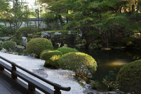 円満院門跡 庭園