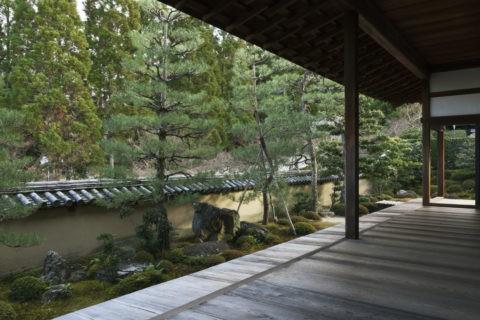一休寺 庭園