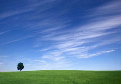 筋雲と緑の丘