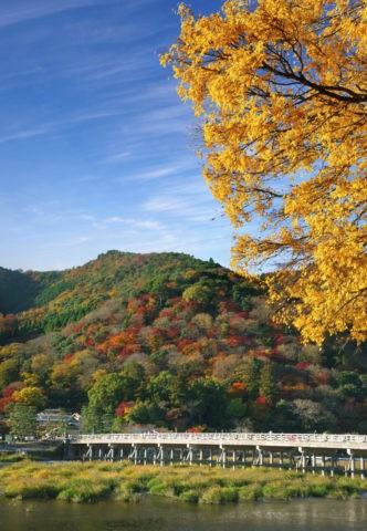 筋雲と紅葉の嵐山