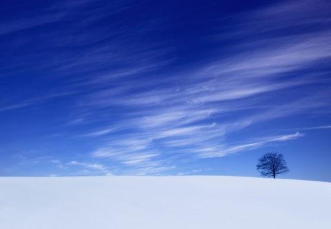 雪原と筋雲